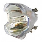 Lamp for LIESEGANG LUXOR PLUS